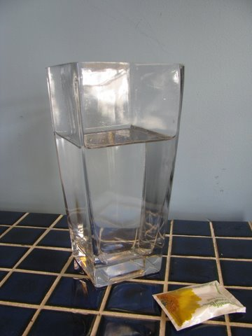 Water in Vase with Preservative