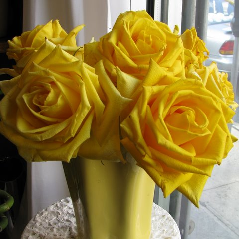 Yellow roses mean friendship first come flowers mightylinksfo