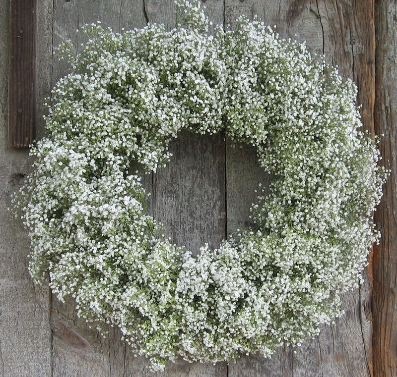 Baby's Breath Wreath