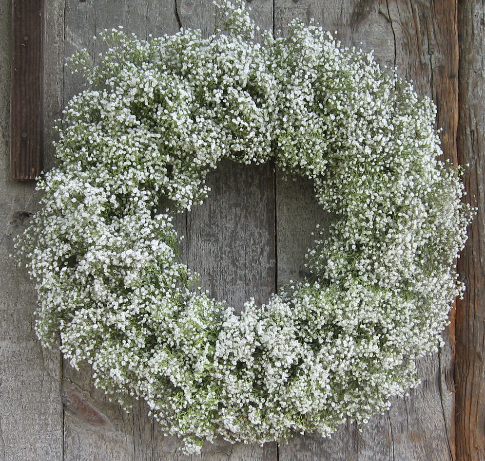 10 Tips For Using Baby S Breath In Flower Arrangements First Come Flowers