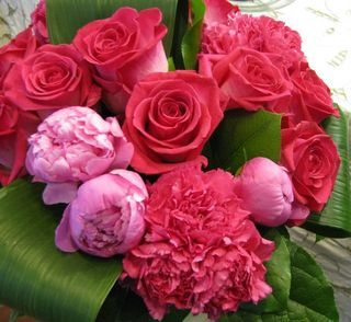 Pink Roses and Peonies