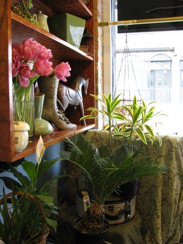 March 2011 Shop window Interior