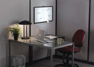Plants -home-ofice aha - business ideas
