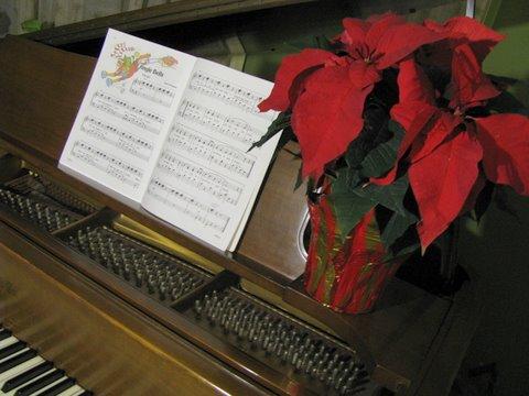 Poinsettia on Piano