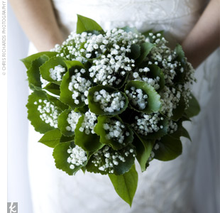 Baby's Breath Wedding Bouquet