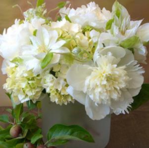 Peony Arrangement - white-florali-peonies1