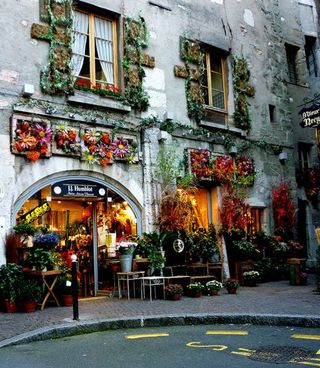 -French flower Shops - Blognfool