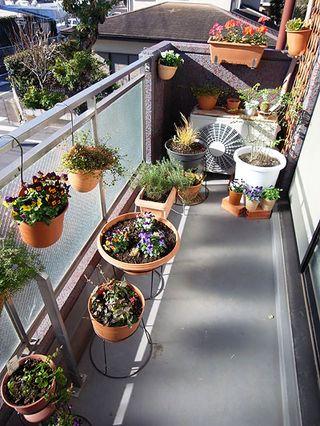 Moon Garden - balcony_garden2 B