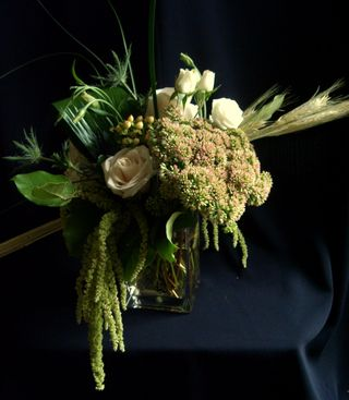 Amaranthus Arrang -Silver_Rse_September_1st_099