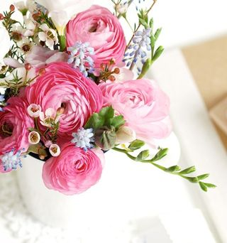 Gift Wrap Pink Ranunculus - Holly Maus