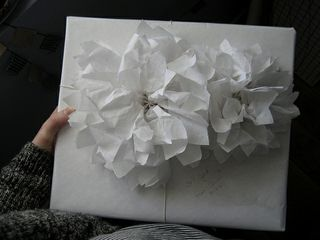 Gift Wrap White Paper flowers - Wildflowers