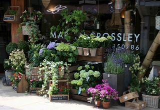 French Flower Shop 2