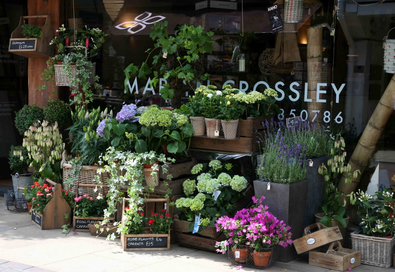 How Should We Decorate Outside Our Flower Shop First Come