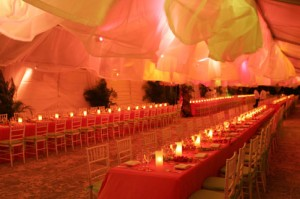 Orange Top 5 Oct Decor