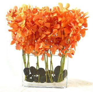 Orange Top 5 Oct Flower Arrang Mokari Orchids