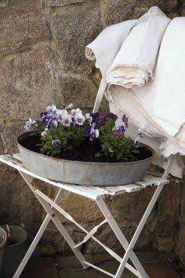 Garden in a Pan - Modern country blog