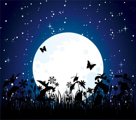 Moon-garden blue sky