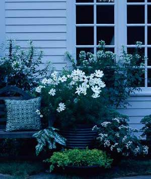 Delicieux Moon Garden Sofa_300