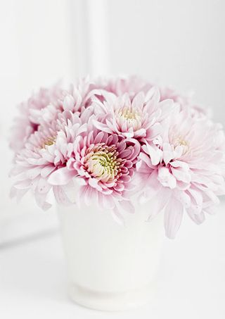 Pink Flowers - A Magazine Moment