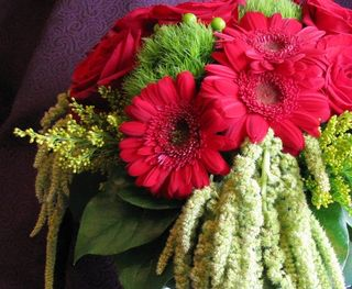 Red Gerbera & Green Amaranthus