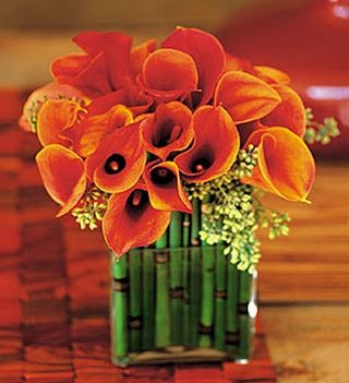 Orange Calla Lily Bamboo Centerpiece - Dean Zamani
