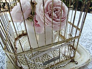Birdcage Roses- Ms. Gracies s House