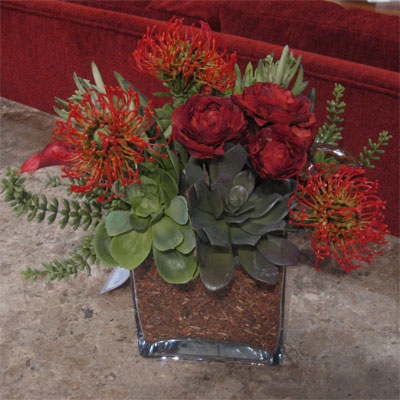 Holiday Succulent Flower Arrangements First Come Flowers
