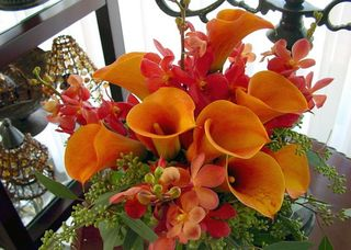 Orange top 5 Oct Flower Arrange 1