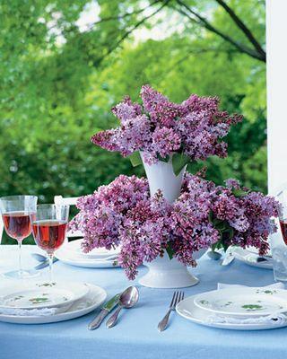 Lilac Arrange