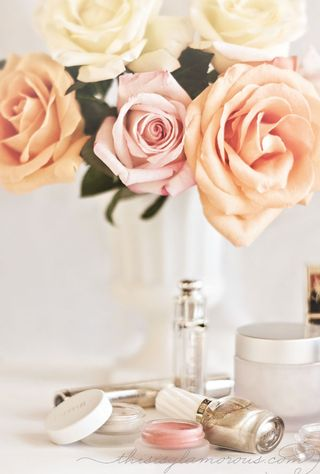 Pale Pink Roses Dressing Room -citified