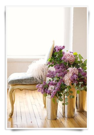Hydrangeas behind Chair