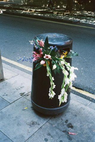 Flowers in Garbage
