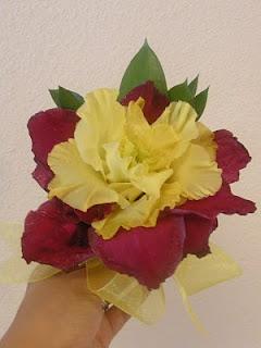 Glamelia red yellow