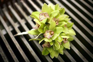 Green Bouquet H