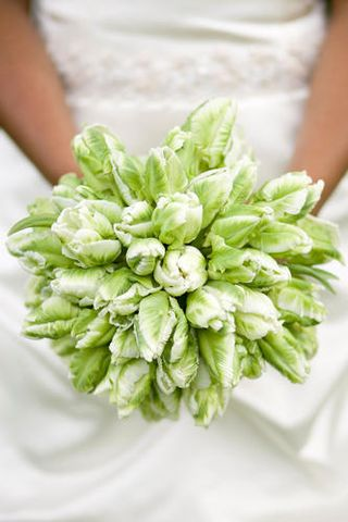 Green Bouquet I