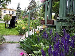 Garden flowers FF