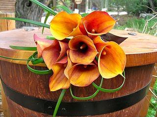 Orange Bouquet 5