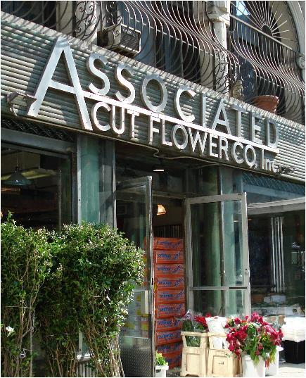 Associated Cut flowers