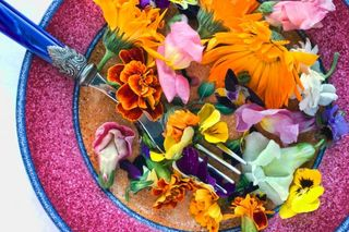 Edible flowers A