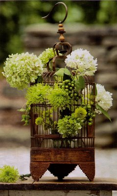 Flowers in bird cages 3