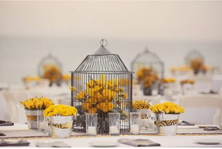 Flowers in birdcage 5