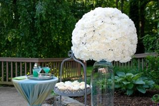 Large white Carnations