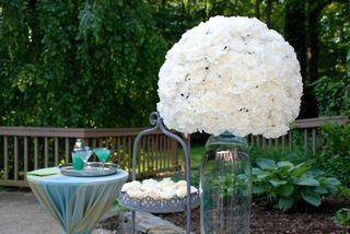 Large white Carnations