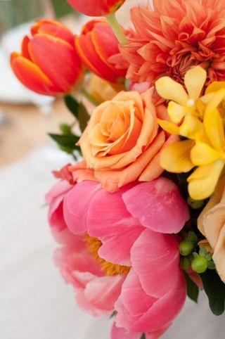 Flowers  Maine Seasons Events