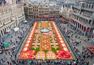 Flower Carpet A