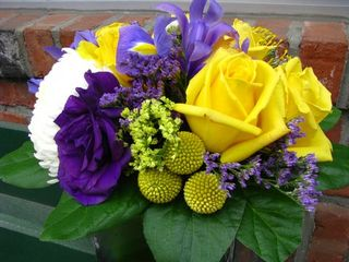 Purple and Yellow Flowers on Brick