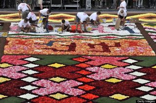 Flower Carpet L