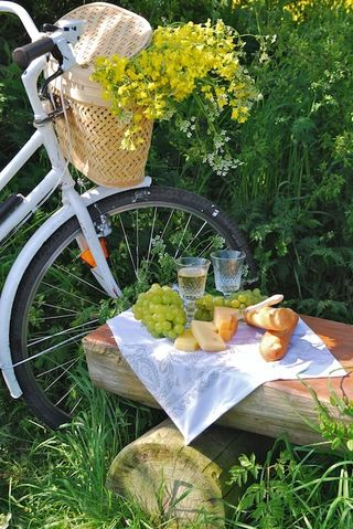 Flower Bike picnic