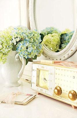 Green and blue hydrangea