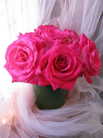 Hot Pink Rose FB